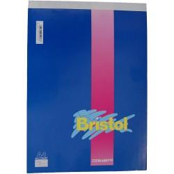 BLASETTI CONFEZIONE 10 BLOCCHI BRISTOL A4 5M